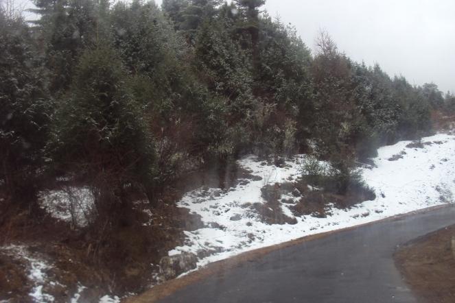 chelela pass snow
