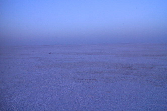 After sunset at Rann of Kutch