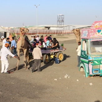 Camre Cart at Rann Utsav