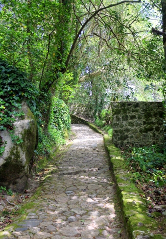 Walking trail to Pena Palace