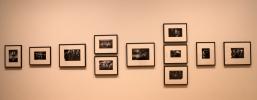 Collection of photos