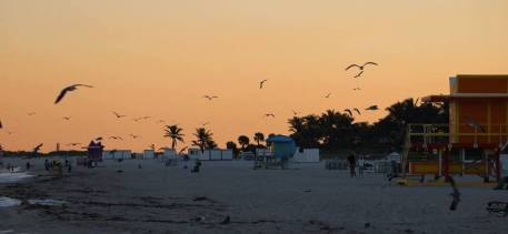South Beach in evening